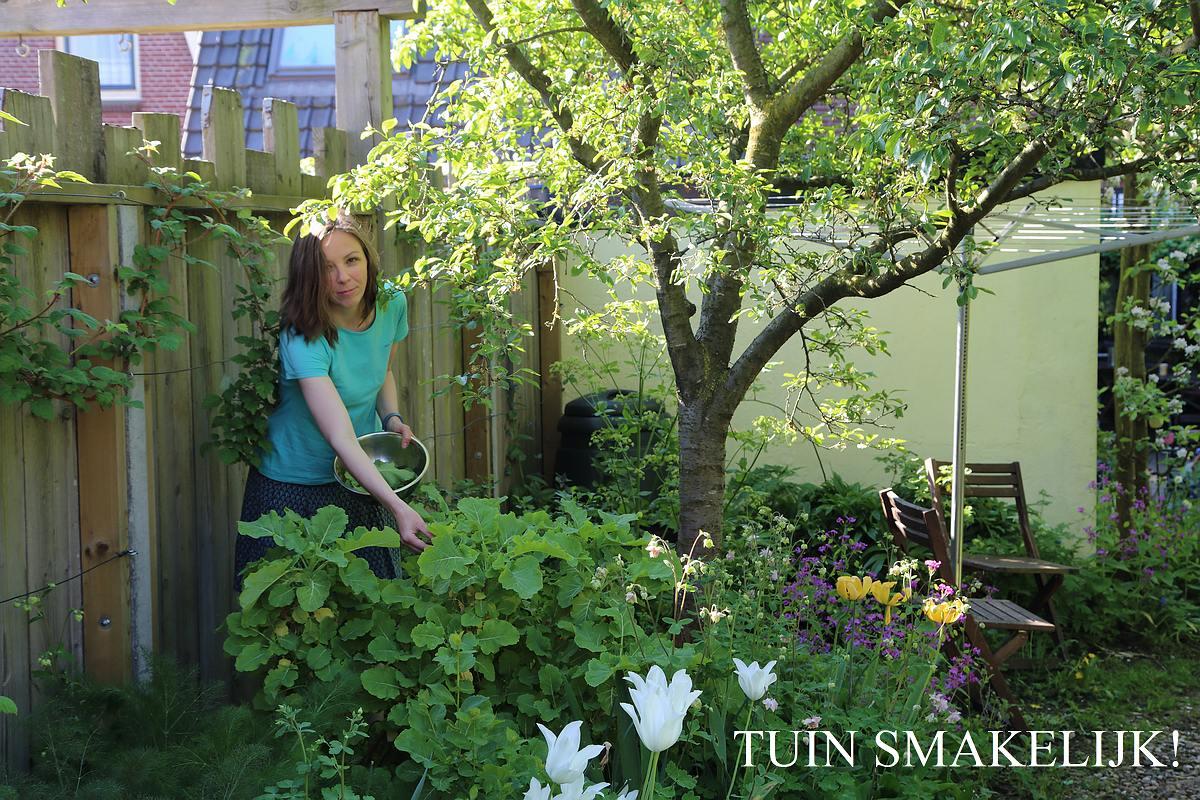 Verrassend Eetbare bostuin | Tuin smakelijk! AM-13
